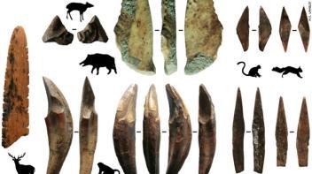 200612125204-bone-tools-restricted-exlarge-169