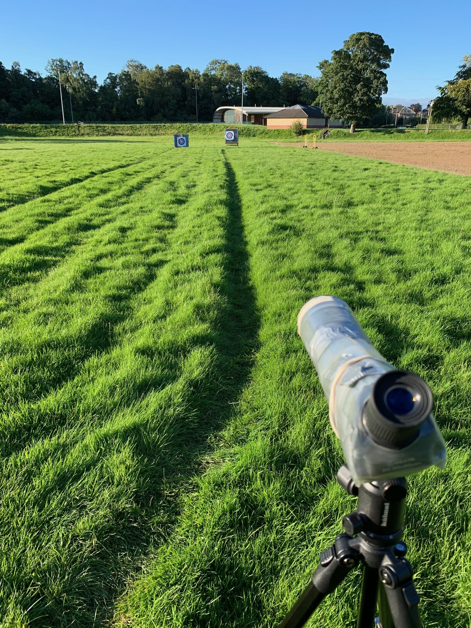 field ocd
