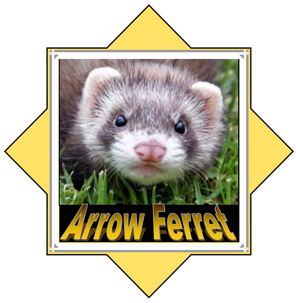 arrow ferret